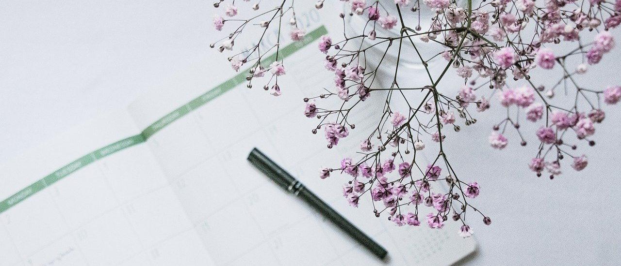 Blogwachstum